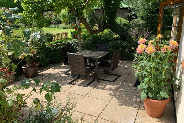 Little-Newt---garden